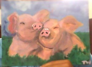 playful pigs